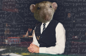 Do dealers rat out counters or are they supposed to